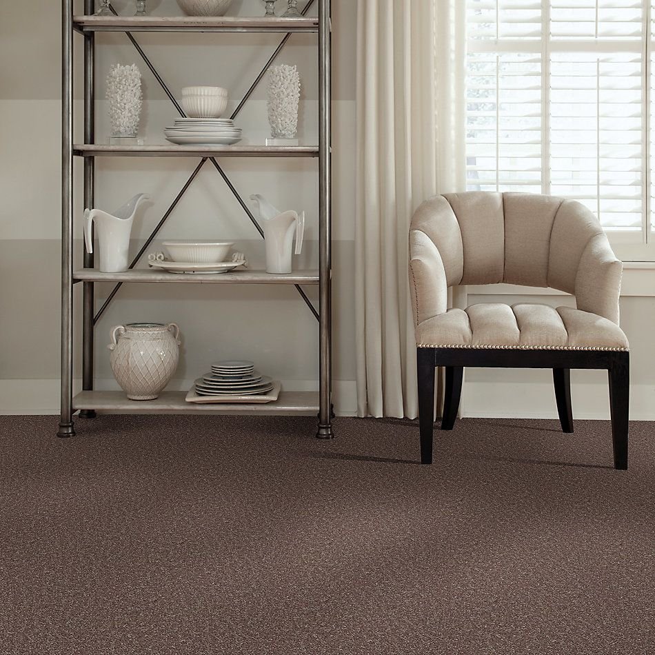 Shaw Floors Roll Special Xv375 Shale 00703_XV375