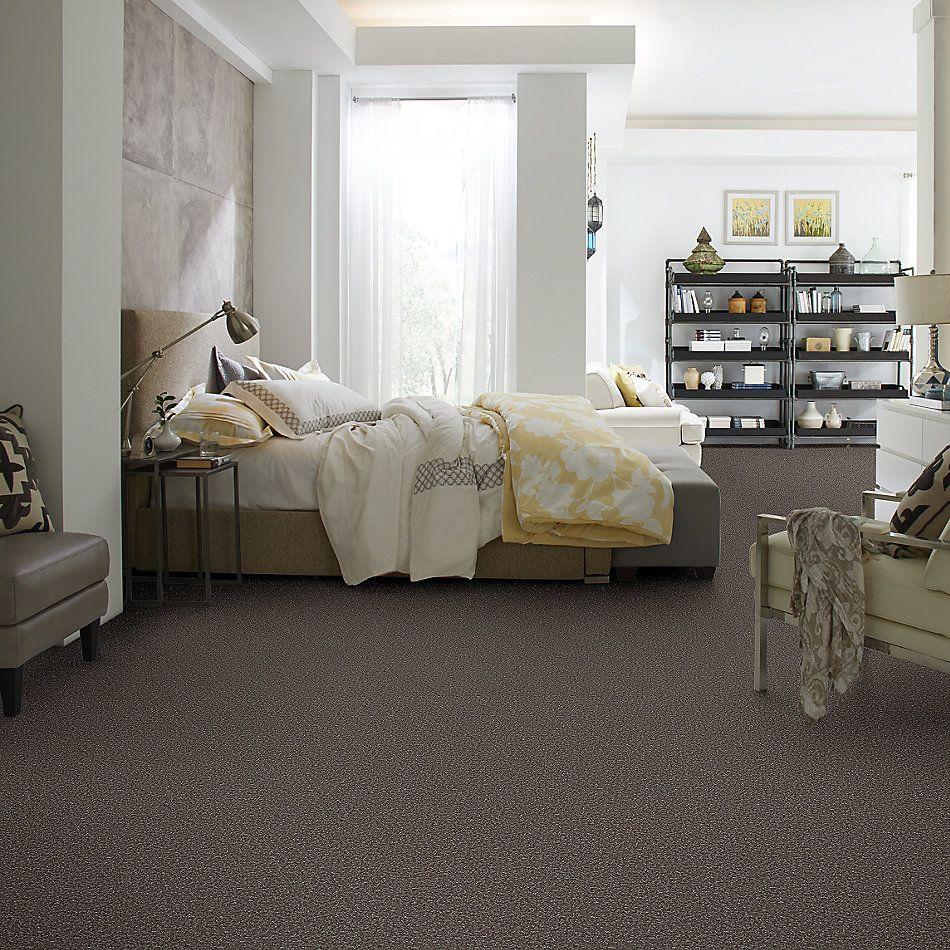 Shaw Floors Roll Special Xv865 Driftwood 00703_XV865