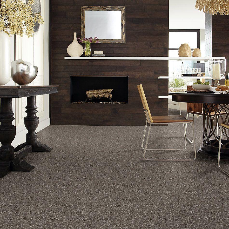 Shaw Floors Roll Special Xv866 Driftwood 00703_XV866