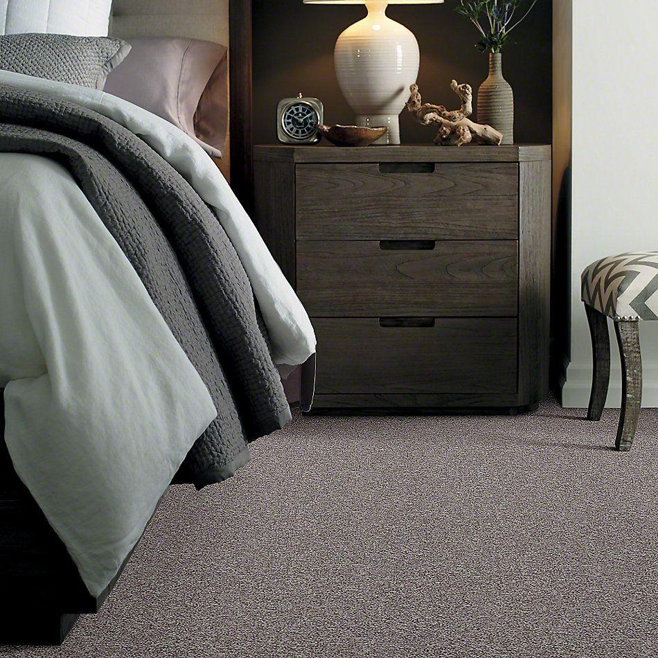 Shaw Floors SFA Explore With Me Texture Fleece 00704_0C202