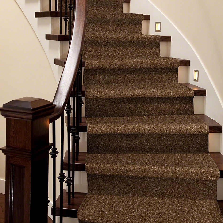 Shaw Floors Shaw Flooring Gallery Highland Cove III 15 Brass Button 00704_5224G