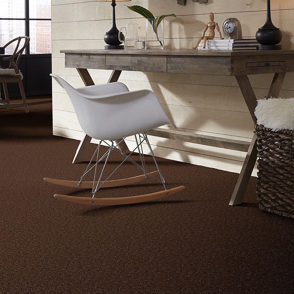 Shaw Floors SFA Flashy Spare Brown 00704_52E55