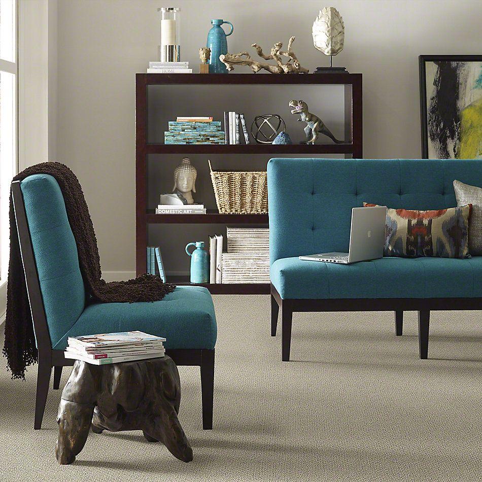 Shaw Floors Shaw Flooring Gallery Supreme Comfort Loop Smooth Slate 00704_5469G