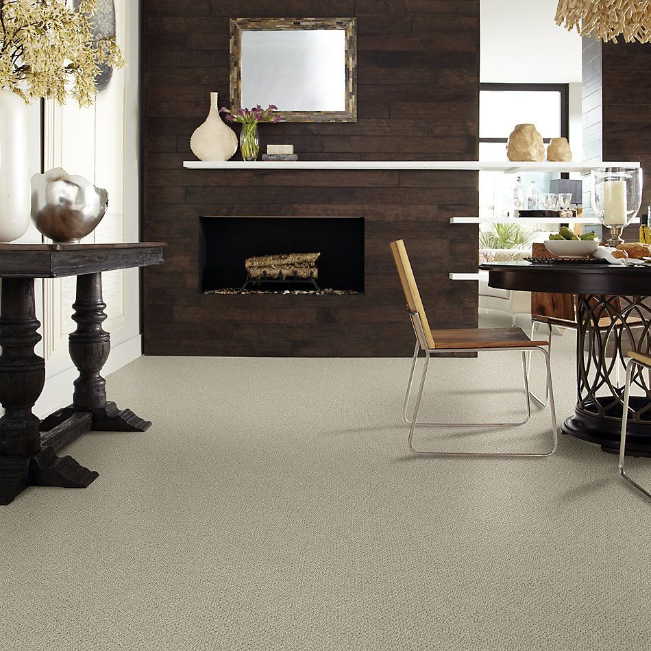 Shaw Floors Shaw Flooring Gallery Subtle Shimmer Loop Smooth Slate 00704_5568G