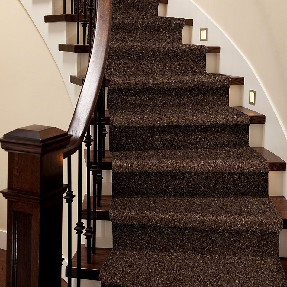 Shaw Floors Shaw Design Center Inspirational Spare Brown 00704_5C329