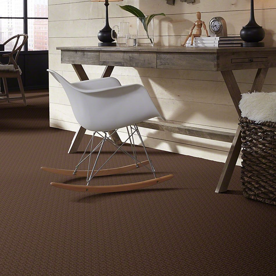 Shaw Floors Shaw Design Center Distinctively Yours Winchester 00704_5C589