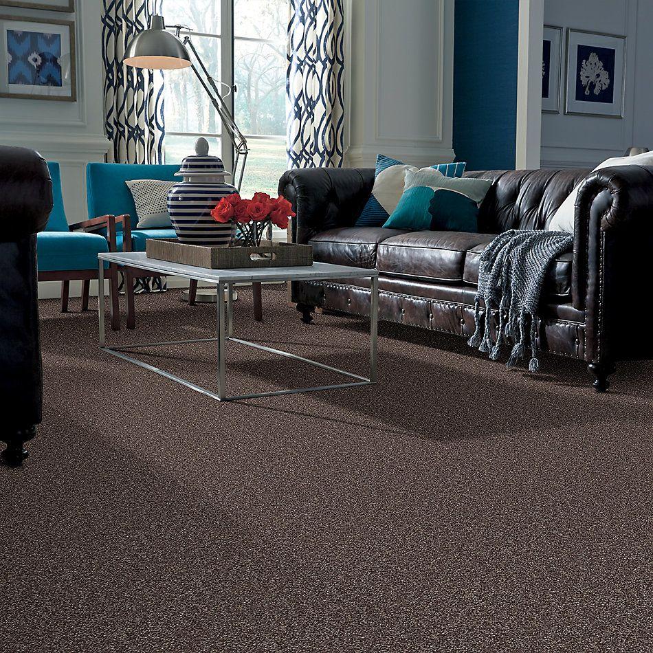 Shaw Floors Break Away (s) Mocha 00704_5E243