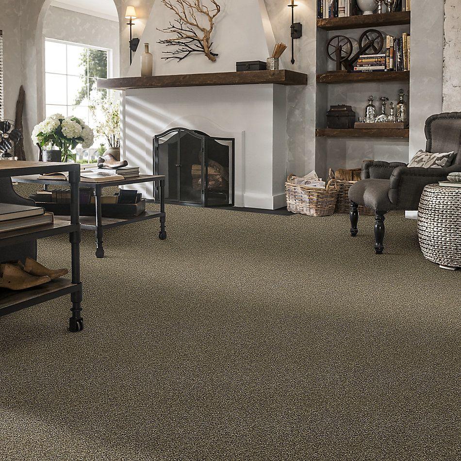 Shaw Floors Creative Elegance (floors To Go) Grand Feelings II Leather 00704_7B3I9