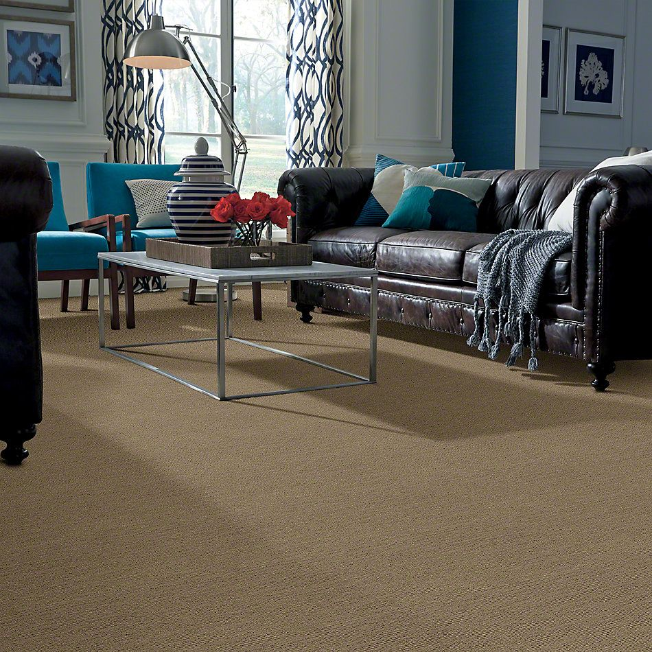Shaw Floors Caress By Shaw Refined Indulgence Welsh Hill 00704_CCB44