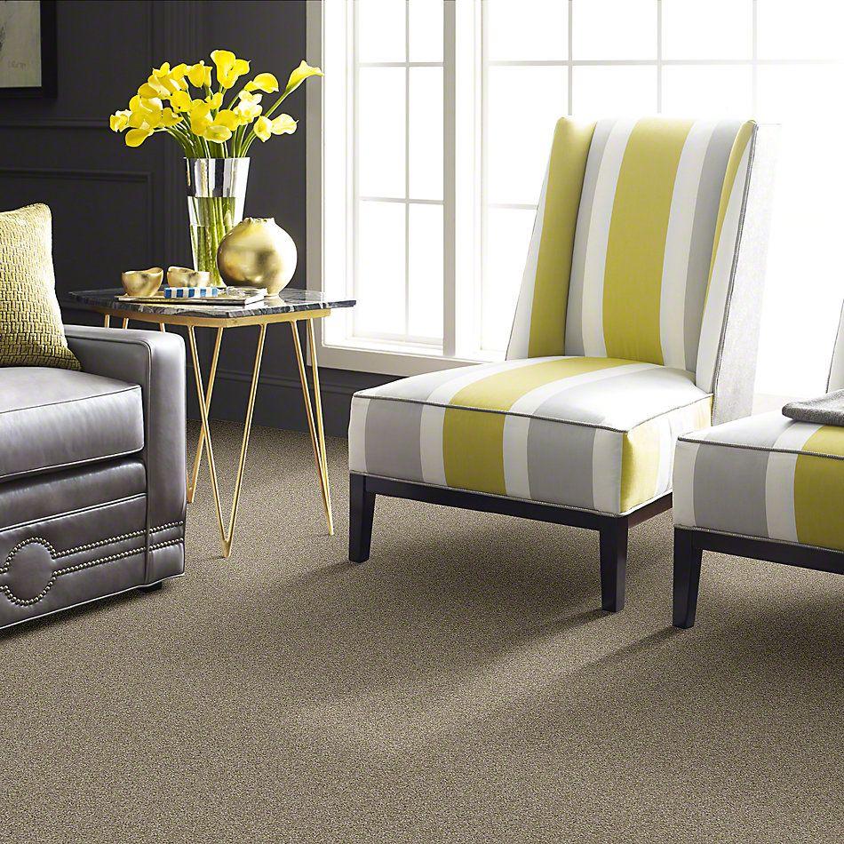 Shaw Floors Entourage Smooth Slate GF00704_E0342