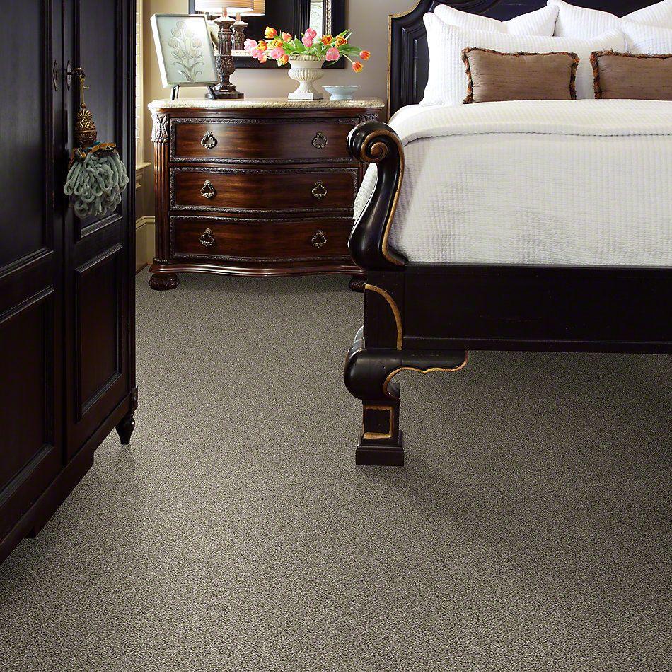 Shaw Floors Confident Smile Smooth Slate 00704_E0649