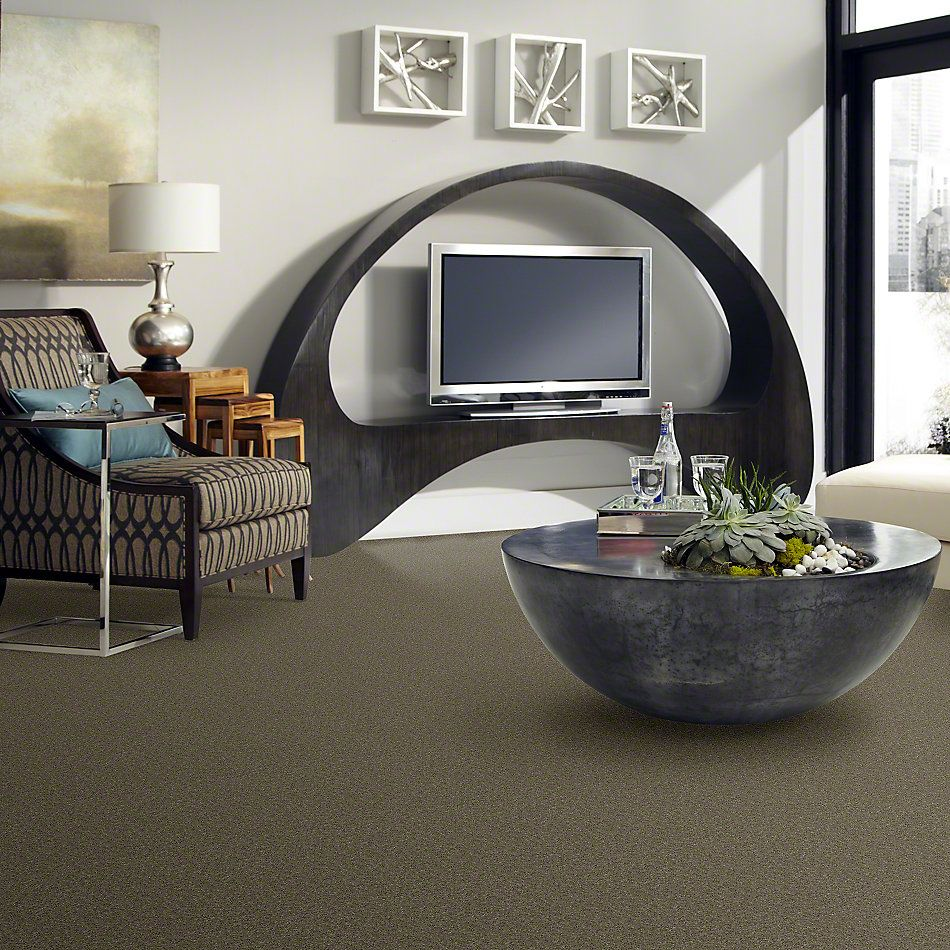 Shaw Floors Value Collections Sing With Me II Net Bark 00704_E0906