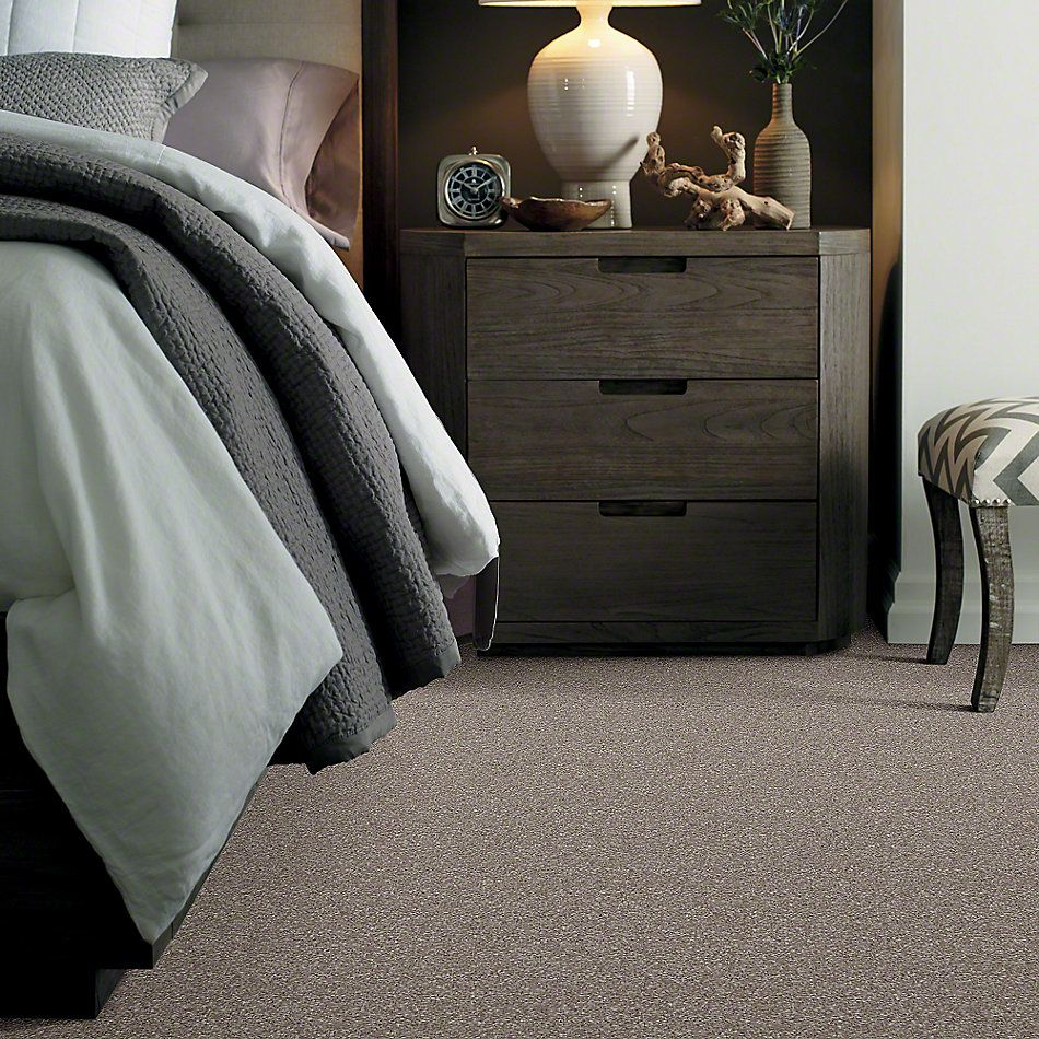 Shaw Floors Value Collections That's Right Net Ashen 00704_E0925