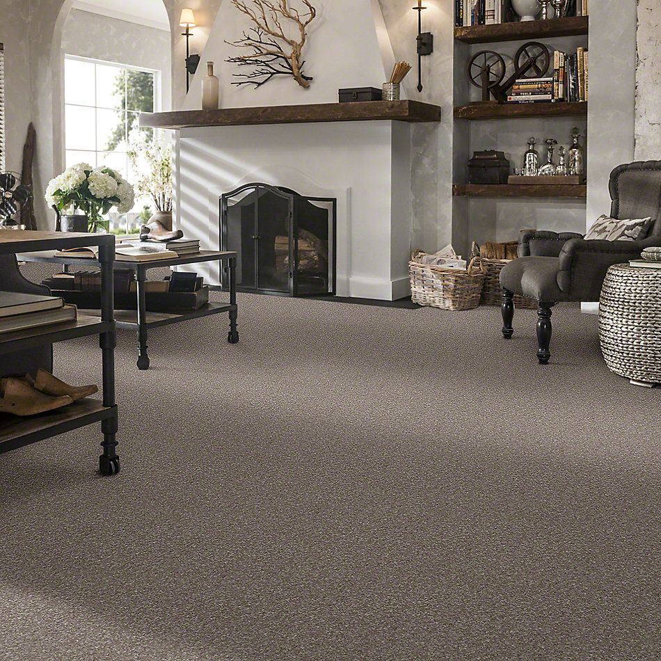Shaw Floors Value Collections What's Up Net Ashen 00704_E0926