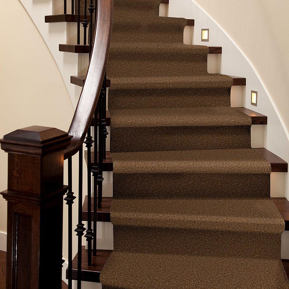 Shaw Floors Value Collections Passageway 2 12 Brass Button 00704_E9153