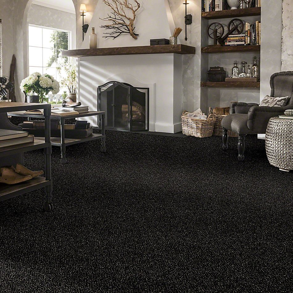 Shaw Floors Simply The Best Because We Can I 12′ Wild Horses 00704_E9186