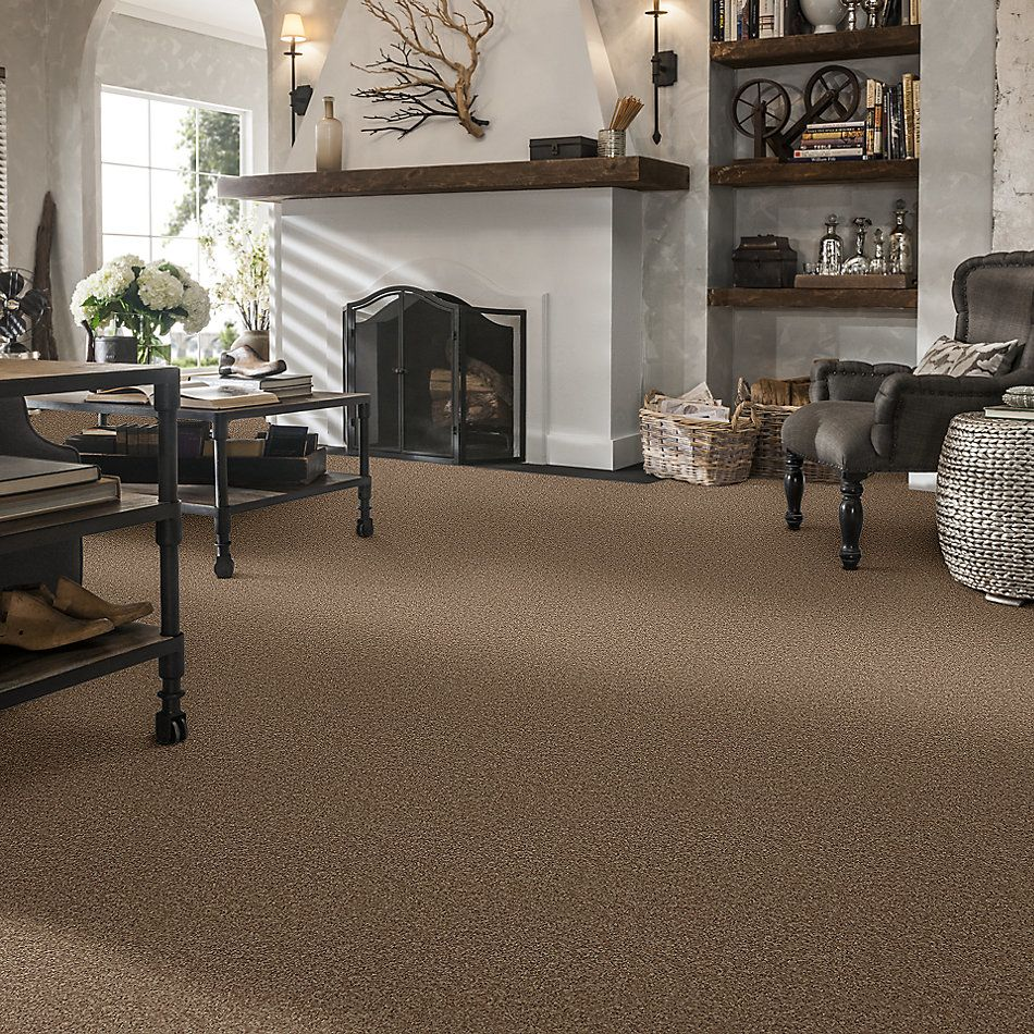 Shaw Floors Value Collections Full Court 15′ Net Taffy 00704_E9270