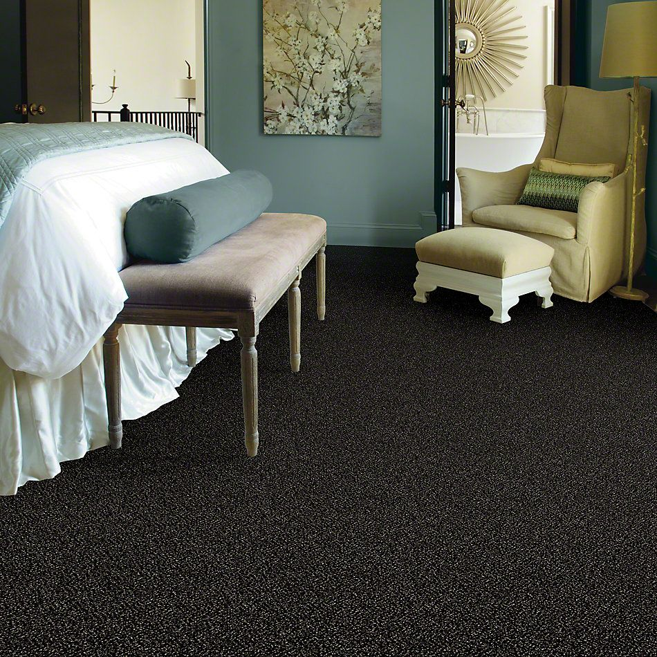 Shaw Floors Value Collections Because We Can I 15′ Net Wild Horses 00704_E9313