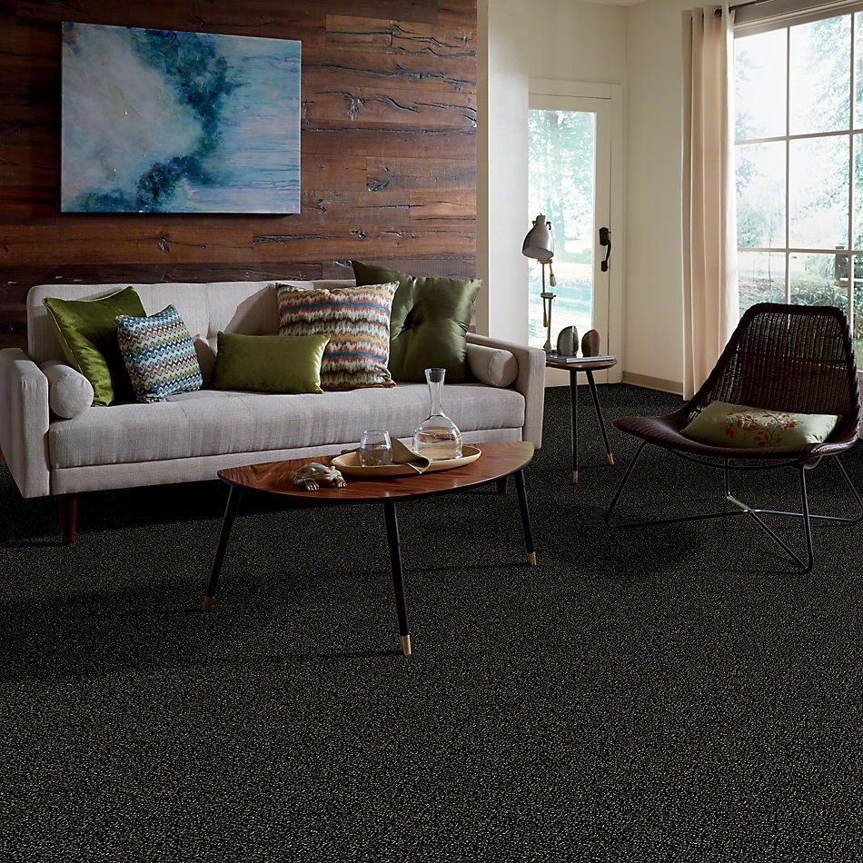 Shaw Floors Value Collections Because We Can II 15′ Net Wild Horses 00704_E9315