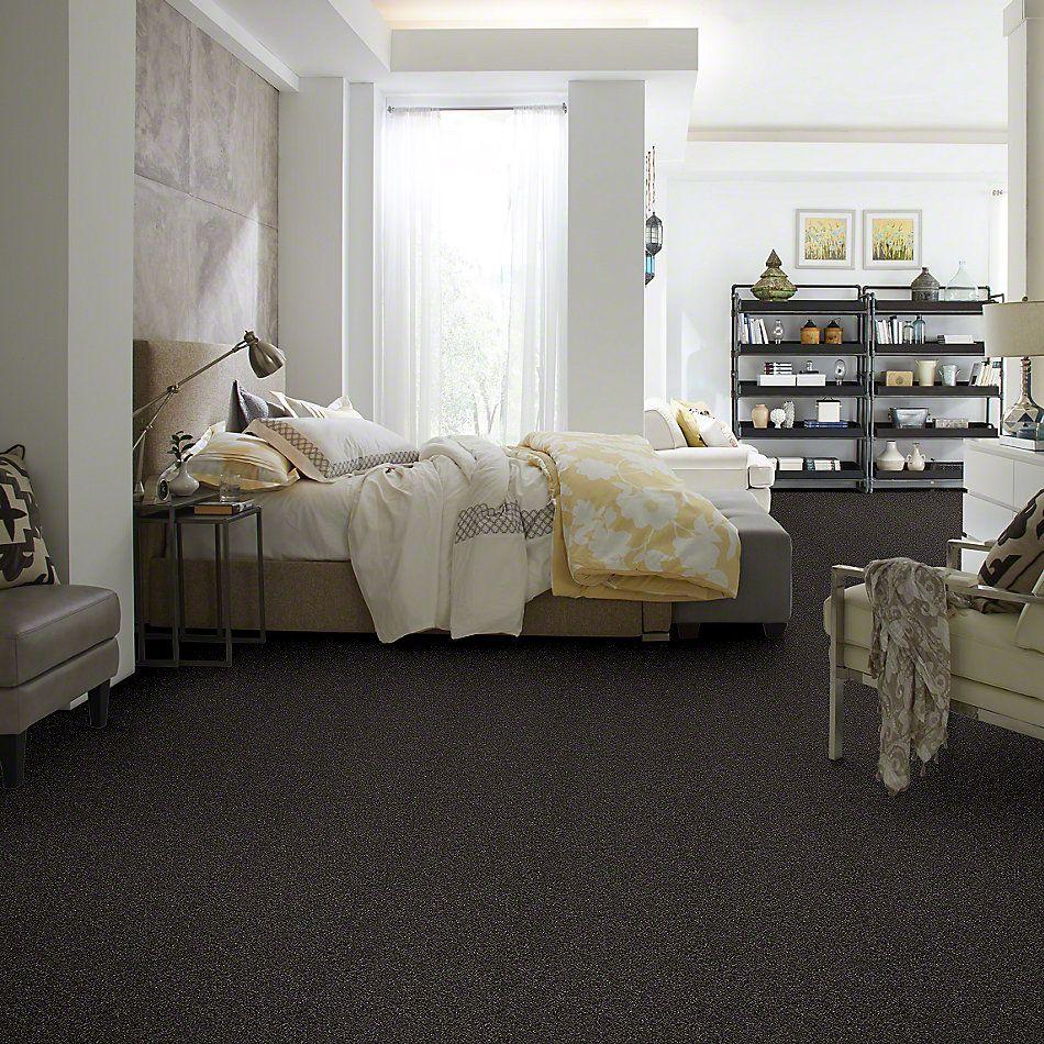 Shaw Floors Effervescent Riverbank 00704_E9366