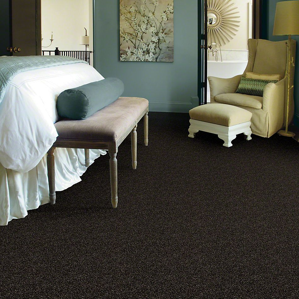 Shaw Floors Value Collections Of Course We Can I 15 Net Rich Earth 00704_E9432