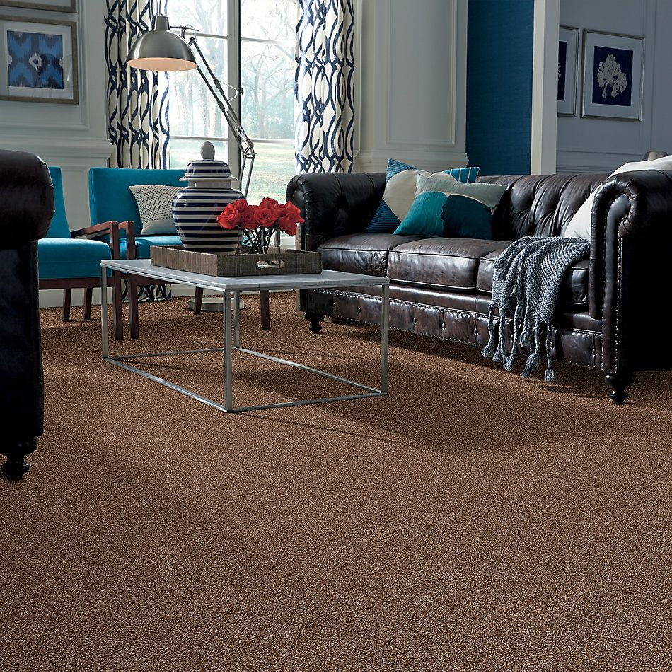 Shaw Floors Simply The Best Super Buy 65 Henna 00704_E9601