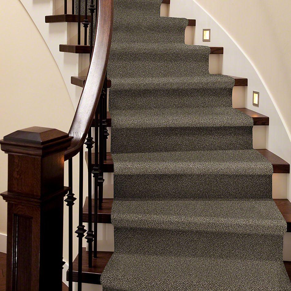 Shaw Floors Bellera Perpetual I Leather 00704_E9692