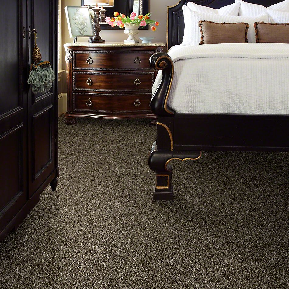 Shaw Floors Bellera Perpetual II Leather 00704_E9693