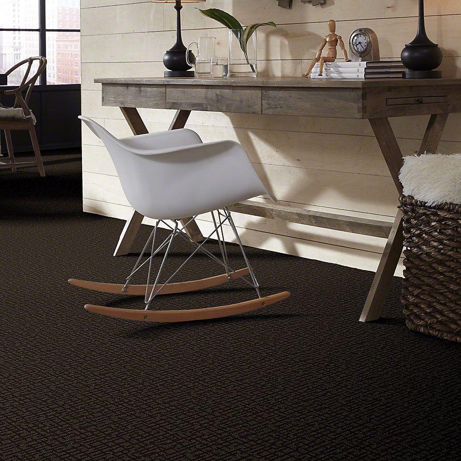 Shaw Floors Thoughtful Approach Coffee Bean 00704_E9726