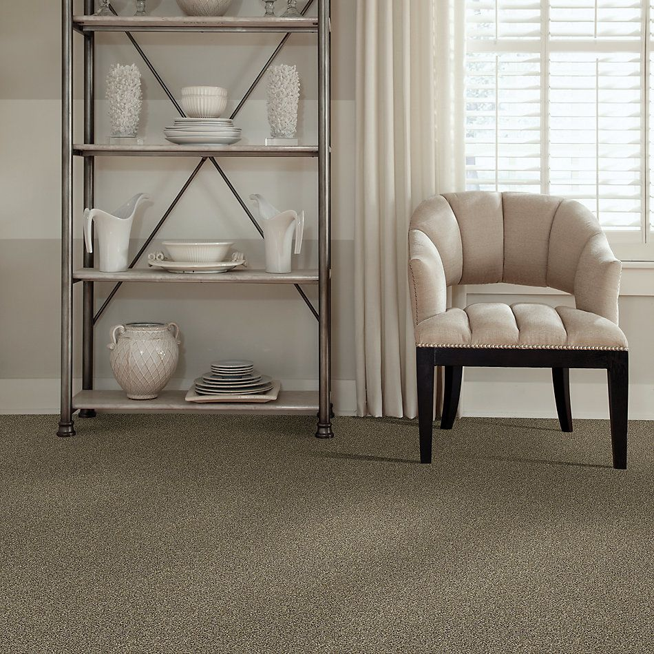 Shaw Floors Bellera Points Of Color I Net Leather 00704_E9785