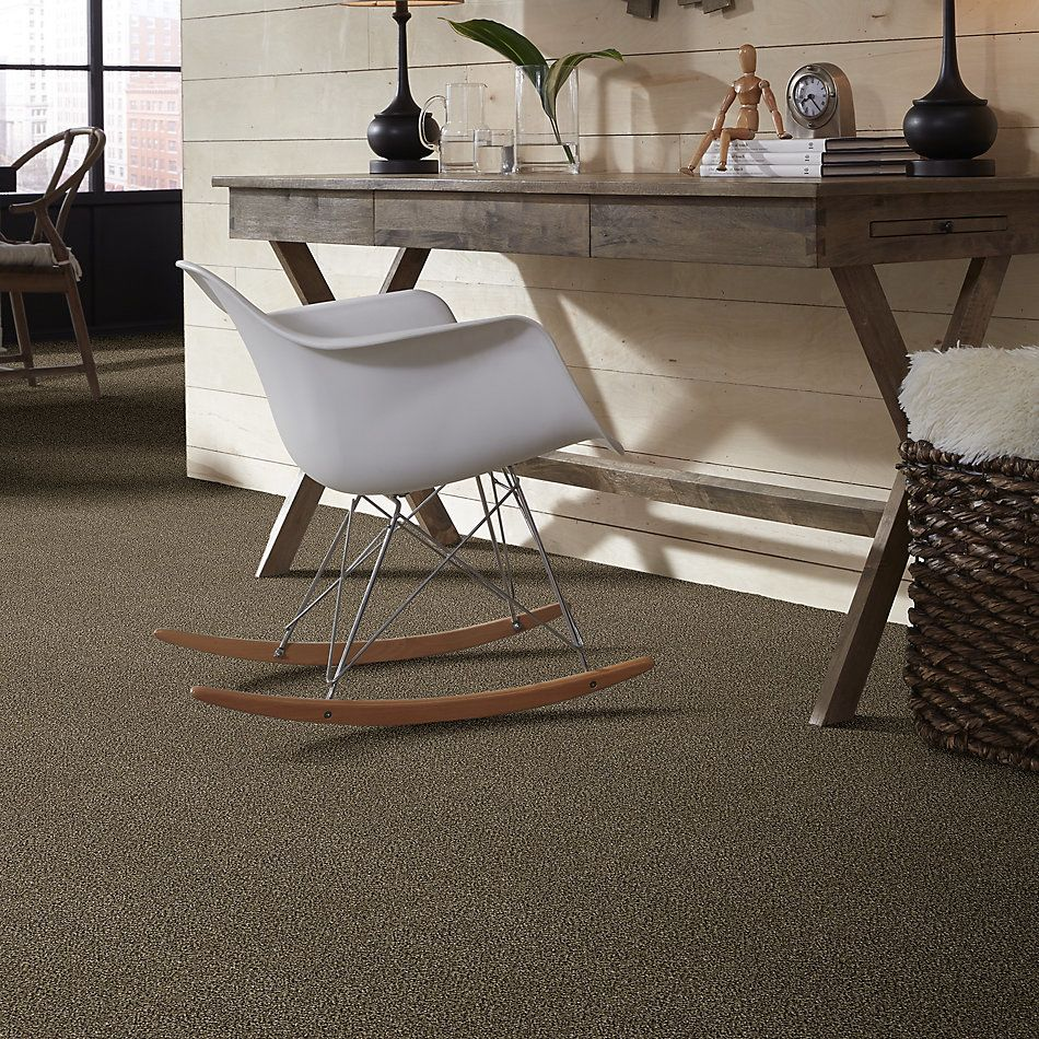 Shaw Floors Bellera Perpetual I Net Leather 00704_E9787