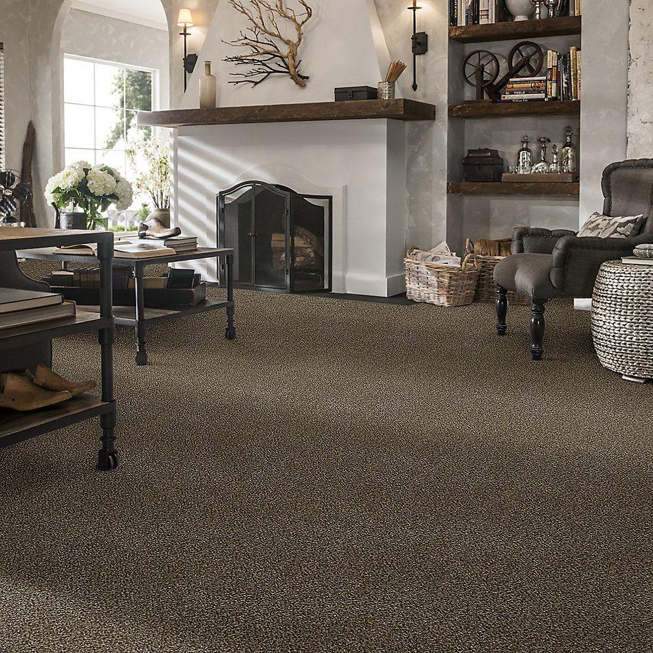 Shaw Floors Bellera Perpetual II Net Leather 00704_E9788