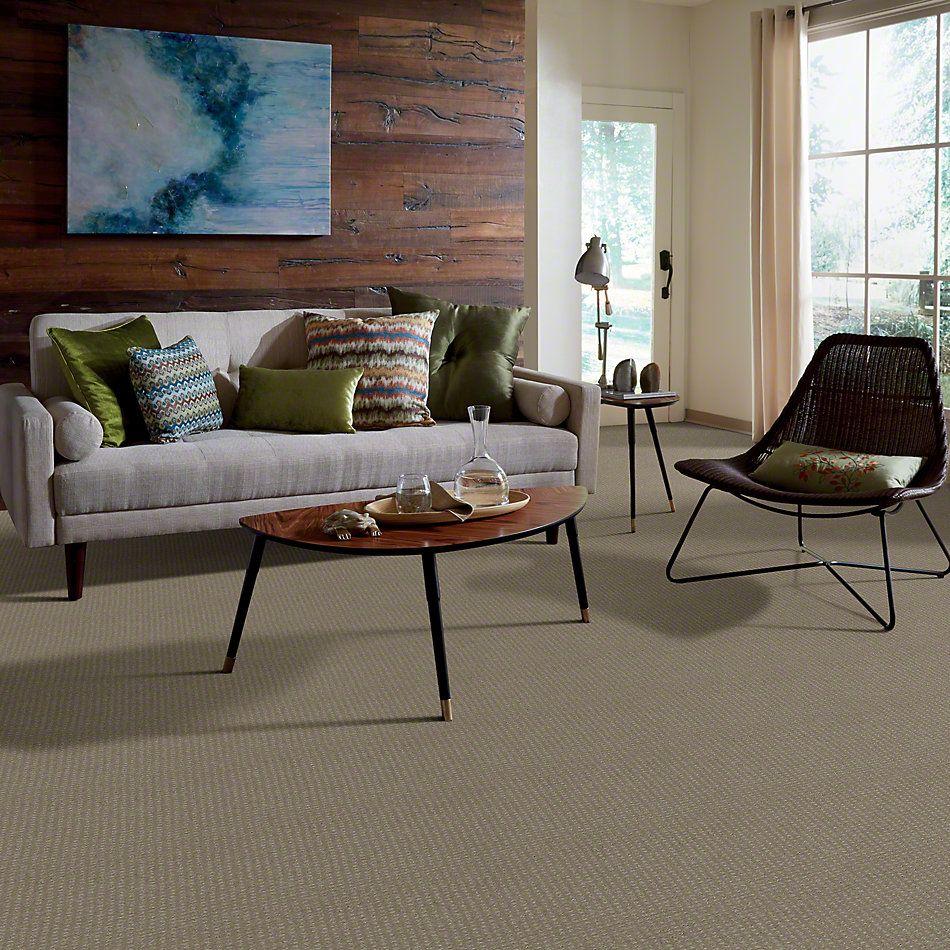 Shaw Floors SFA Loyal Beauty Pattern Smooth Slate 00704_EA183