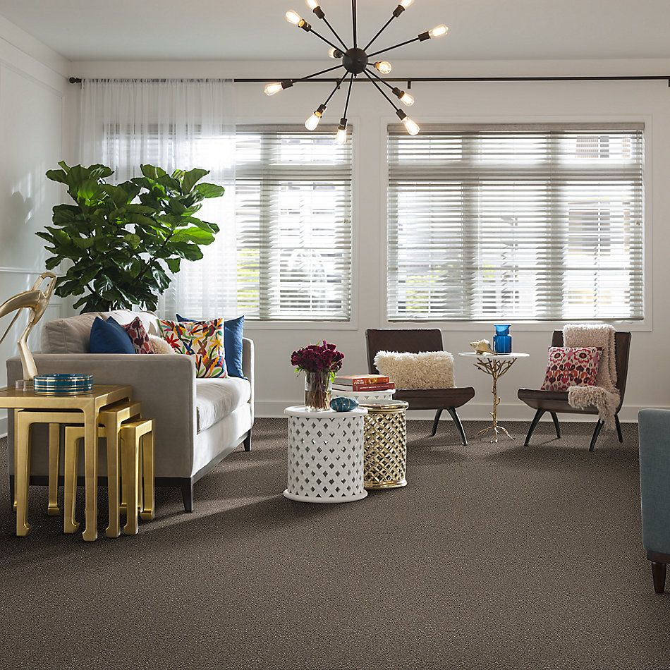 Shaw Floors Home Foundations Gold Parklane Meadows Ashen 00704_FQ274