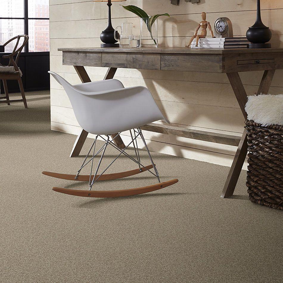 Shaw Floors Nfa/Apg Detailed Elegance II Smooth Slate 00704_NA333