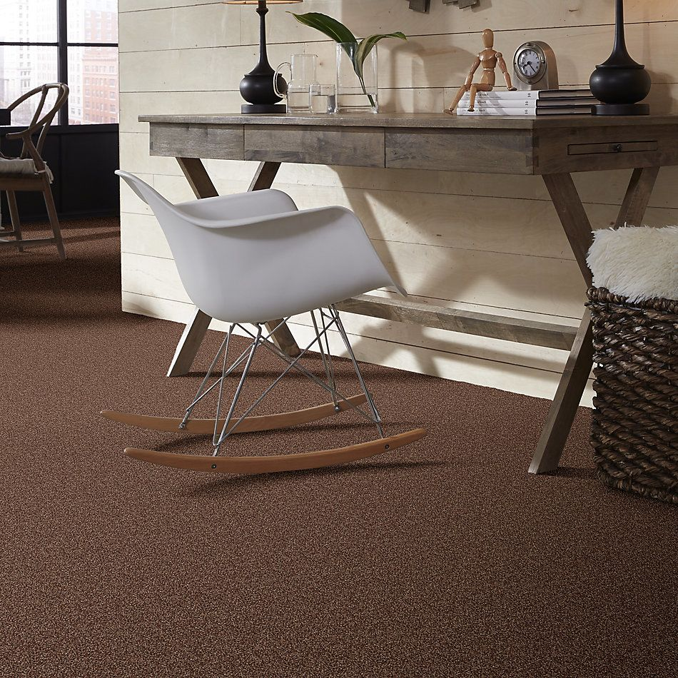 Shaw Floors Roll Special Px025 Saddle 00704_PX025