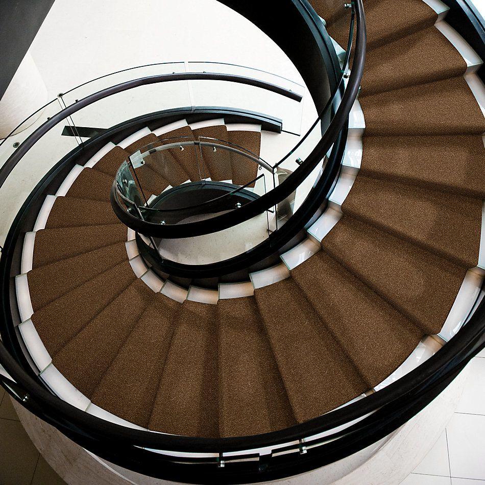 Shaw Floors Queen Harborfields I 12′ Brass Button 00704_Q4718