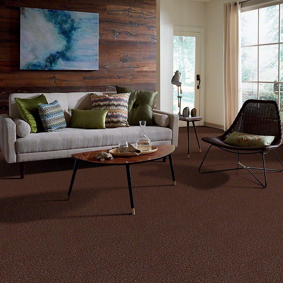 Shaw Floors Shaw Design Center Pacifica Fresh Coffee 00704_QC228