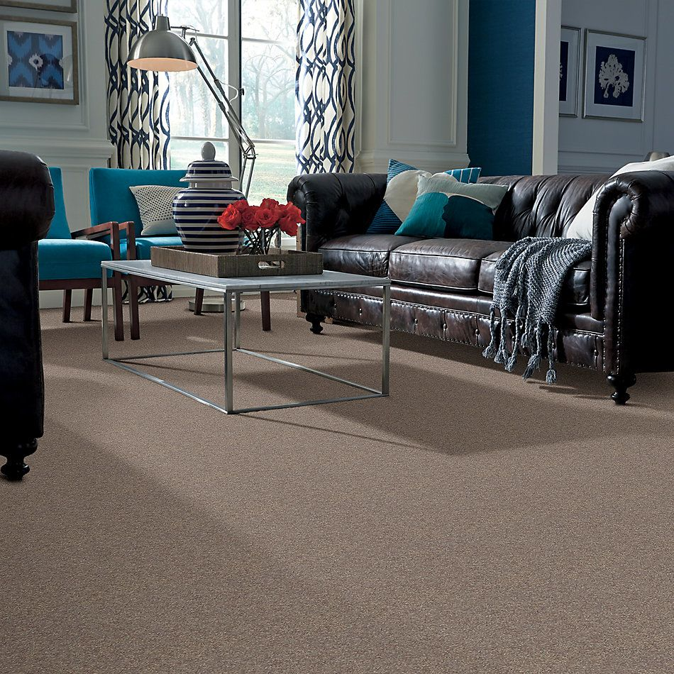 Shaw Floors Roll Special Xv694 Ashen 00704_XV694