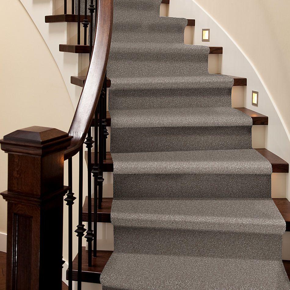 Shaw Floors Roll Special Xv930 Ashen 00704_XV930