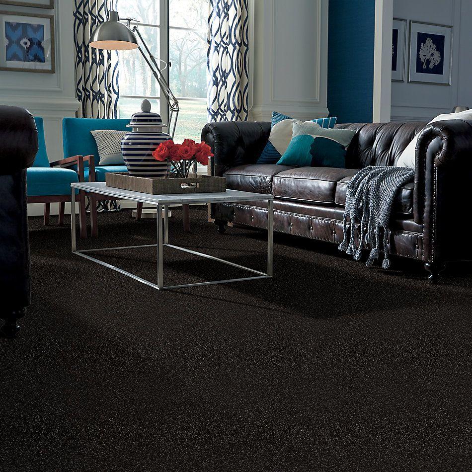Anderson Tuftex American Home Fashions Ziggy Bristol 00704_ZA945