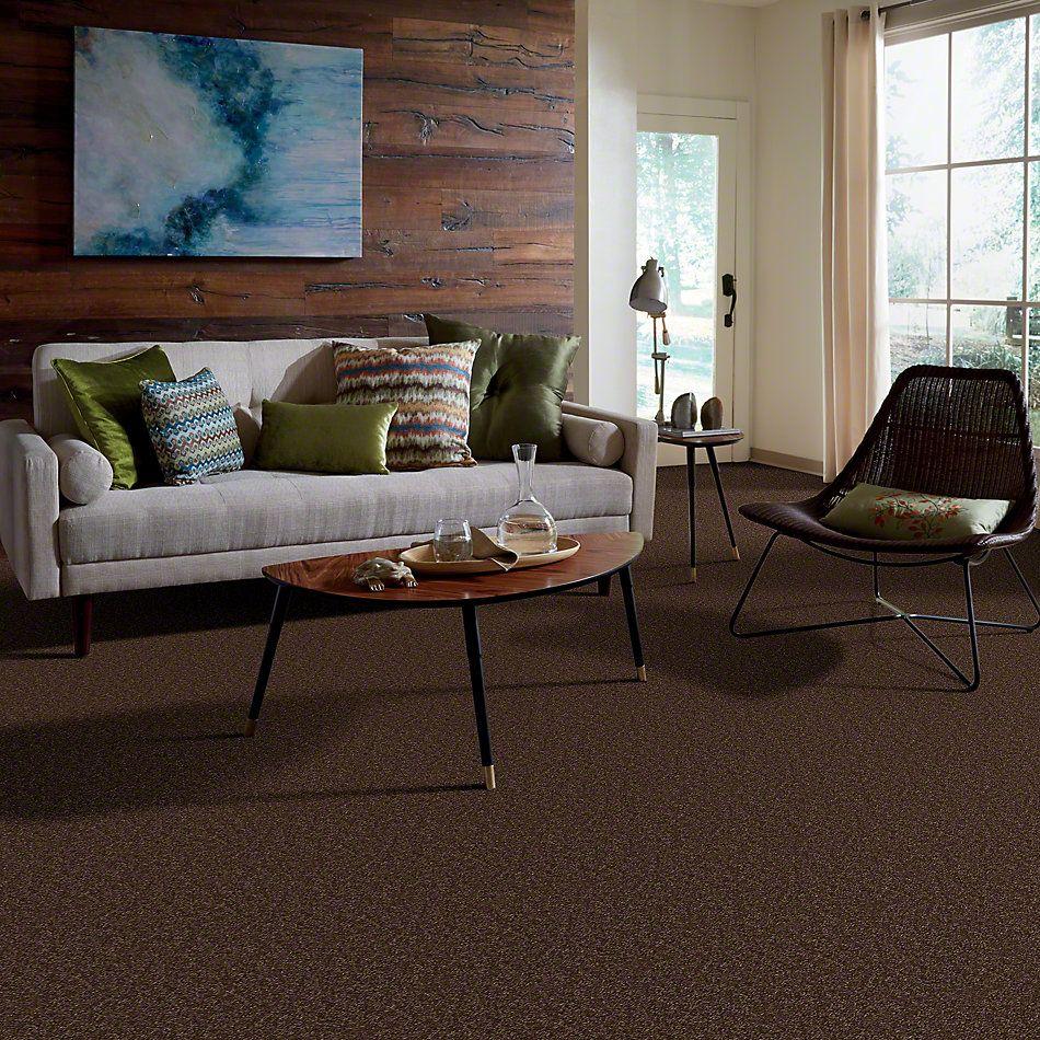 Shaw Floors Town Creek II Mocha Chip 00705_52S30