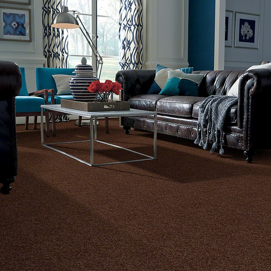 Shaw Floors Town Creek I 15′ Mocha Chip 00705_52V12