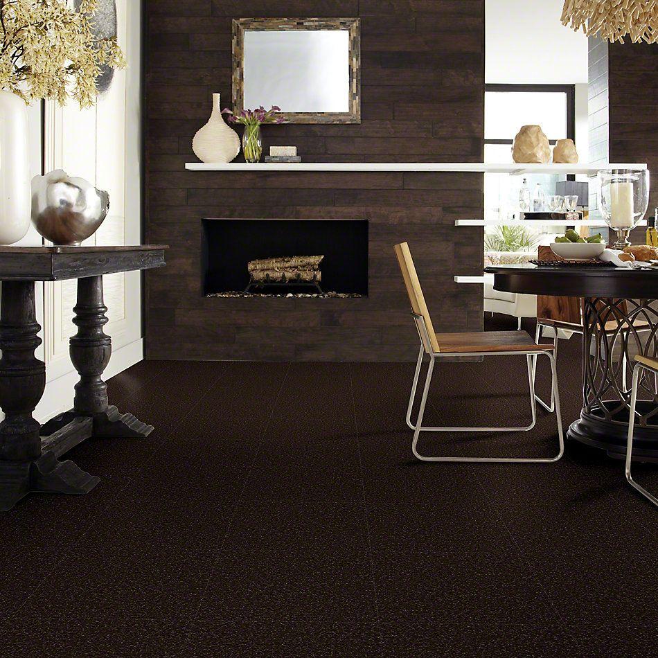 Shaw Floors Shaw Flooring Gallery Union City III 15′ Coffee Bean 00705_5308G