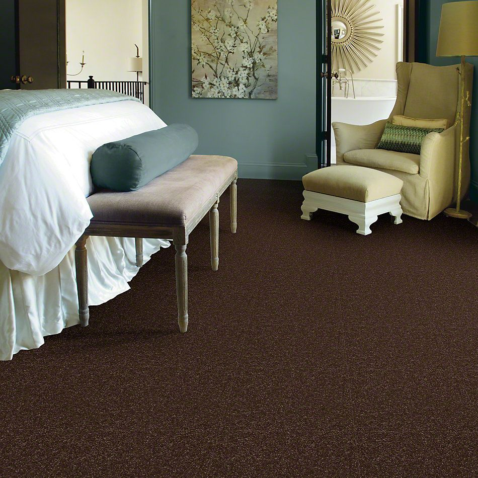 Shaw Floors Shaw Design Center Different Times III 15 Mocha Chip 00705_5C497