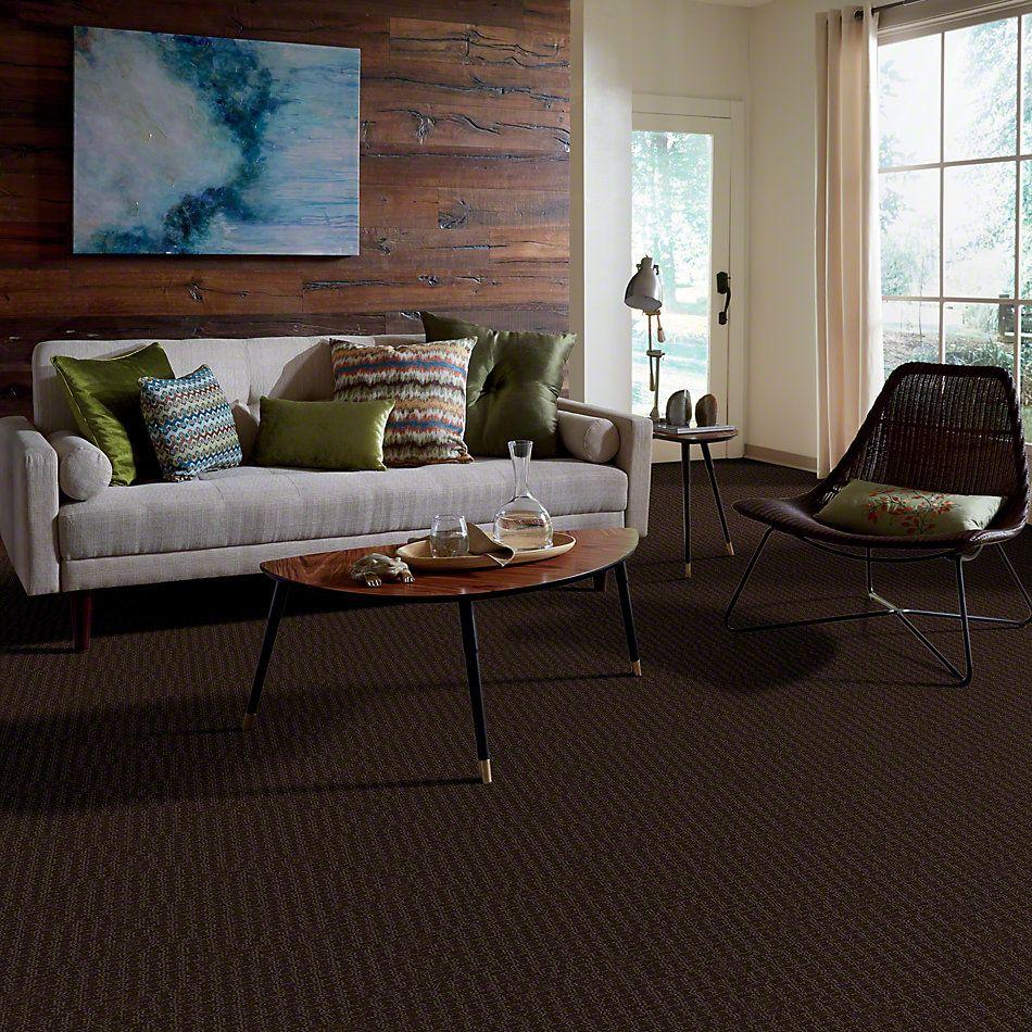 Shaw Floors Shaw Design Center Towne Crest Mocha Chip 00705_5C552