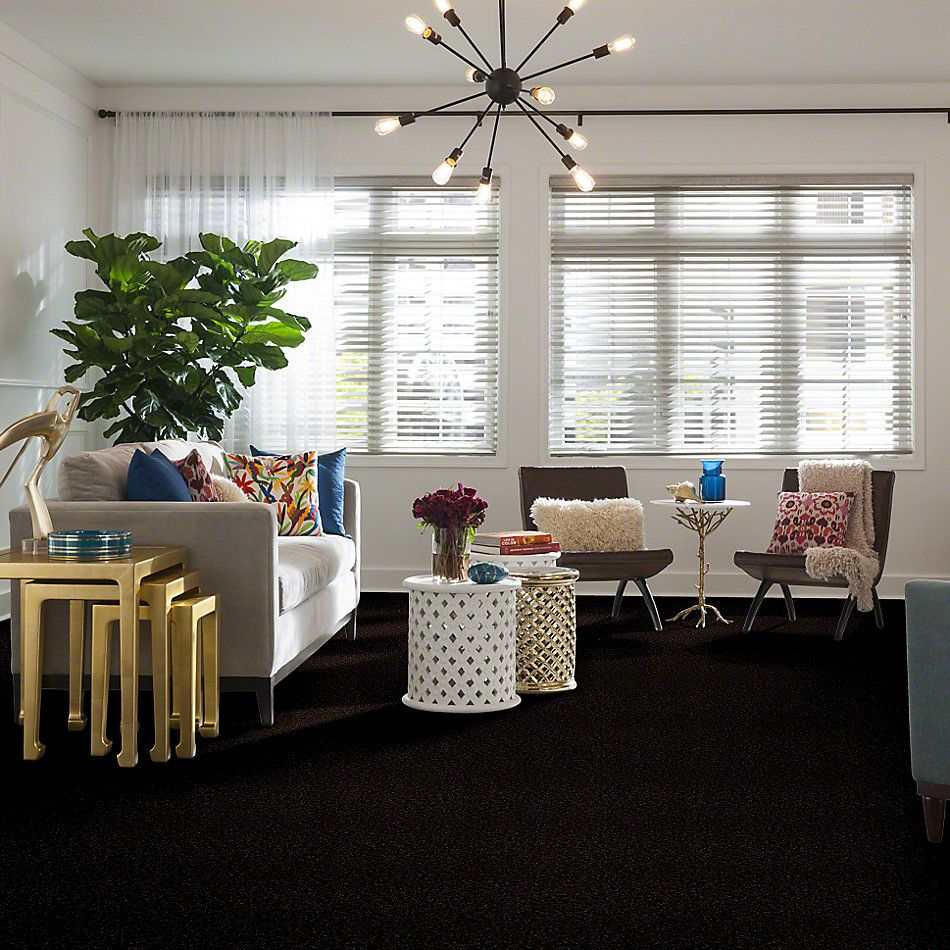 Shaw Floors Shaw Design Center Royal Portrush III 12′ Coffee Bean 00705_5C613