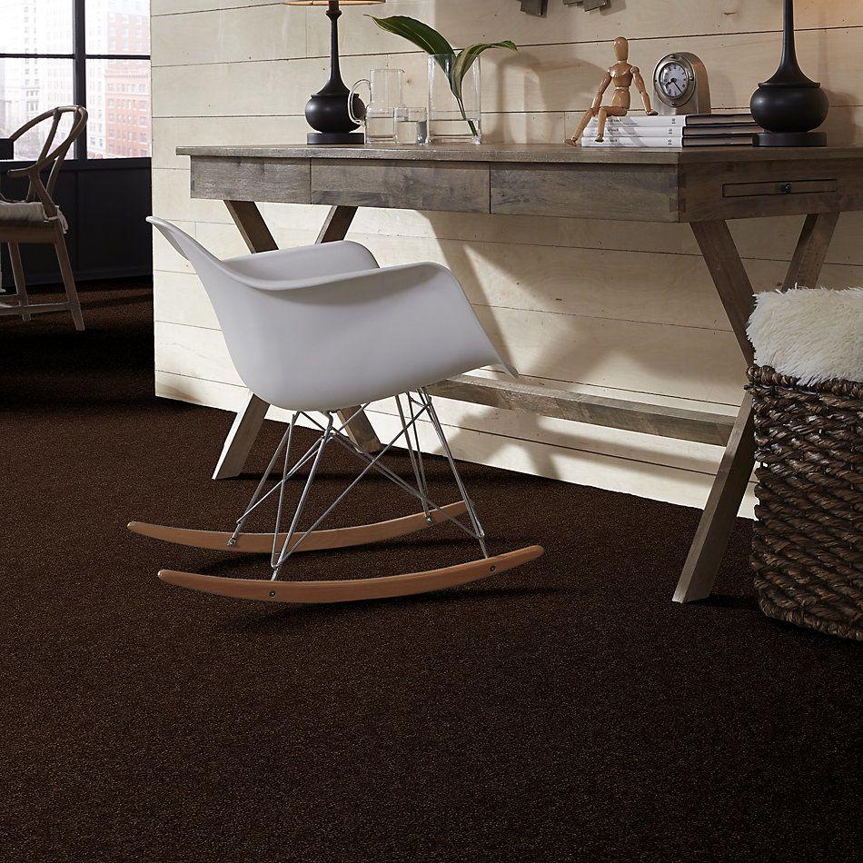 Shaw Floors Break Away (s) Coffee Bean 00705_5E243