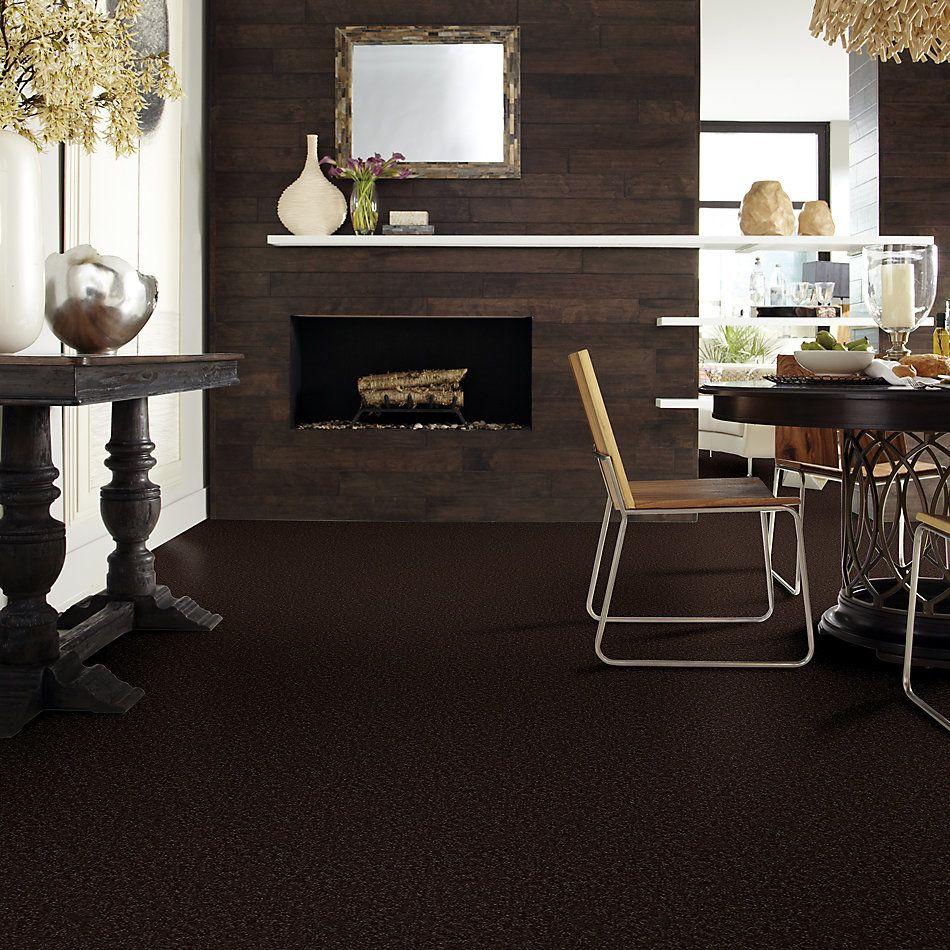 Shaw Floors Value Collections Break Away (s) Net Coffee Bean 00705_5E282