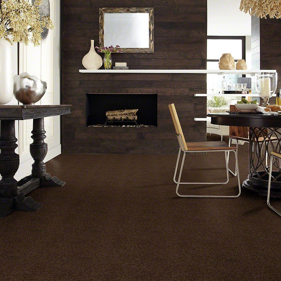 Shaw Floors Enduring Comfort II Coffee Bean 00705_E0342